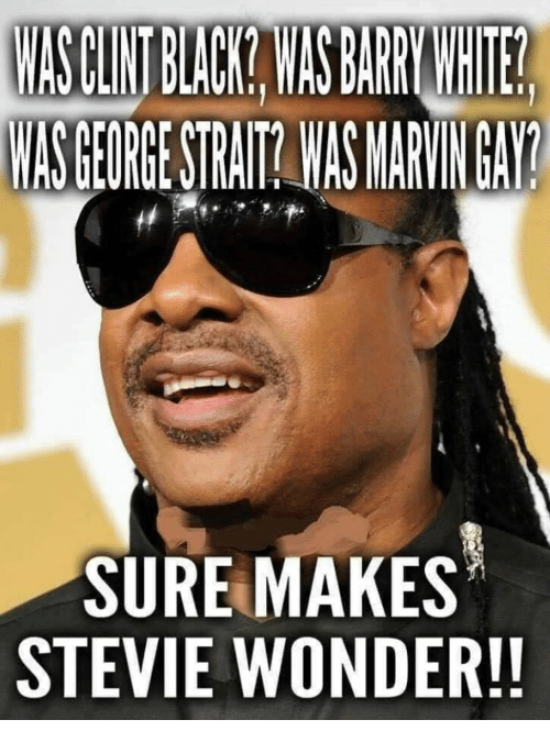 Stevie Wonder, Black, and Wonder: MASELNT BLACK WASEARWIE  WASGEORGE STRAIT WAS MARVINGAY?  SURE MAKES  STEVIE WONDER!!