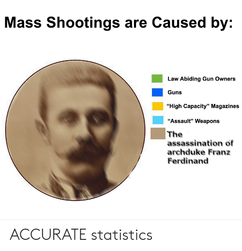 """Assassination, Guns, and Statistics: Mass Shootings are Caused by:  Law Abiding Gun Owners  Guns  """"High Capacity"""" Magazines  """"Assault"""" Weapons  The  assassination of  archduke Franz  Ferdinand ACCURATE statistics"""