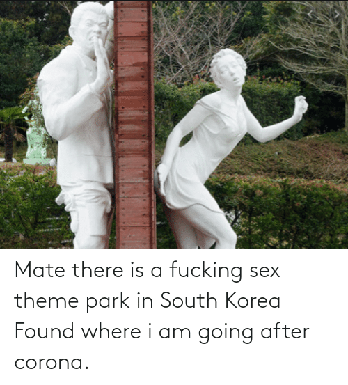 Found: Mate there is a fucking sex theme park in South Korea Found where i am going after corona.