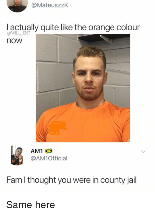 Fam, Jail, and Memes: @MateuszzK  l actually quite like the orange colour  @WILL ENT  now  AM1 X  @AM1Official  Fam l thought you were in county jail Same here