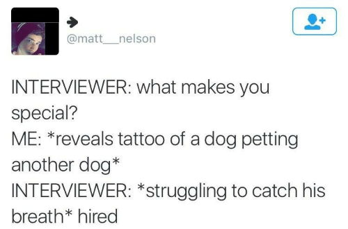 Matt: @matt__nelson  INTERVIEWER: what makes you  special?  ME: *reveals tattoo of a dog petting  another dog*  INTERVIEWER: *struggling to catch his  breath* hired