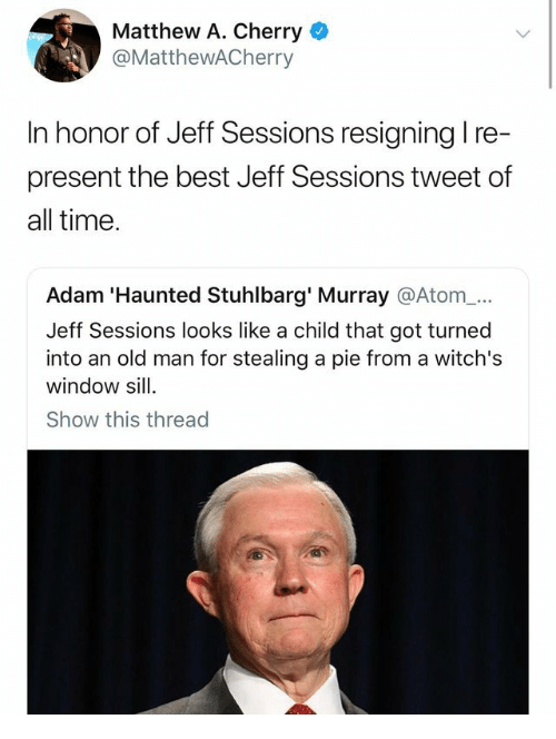 Stealing A: Matthew A. Cherry  @MatthewACherry  In honor of Jeff Sessions resigning l re-  present the best Jeff Sessions tweet of  all time  Adam 'Haunted Stuhlbarg' Murray @Atom_...  Jeff Sessions looks like a child that got turned  into an old man for stealing a pie from a witch's  window sill  Show this thread