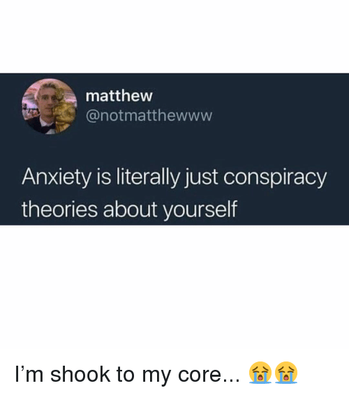Memes, Anxiety, and Conspiracy: matthew  @notmatthewwww  Anxiety is literally just conspiracy  theories about yourself I'm shook to my core... 😭😭