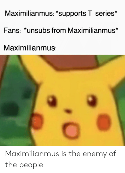"""Maximilianmus: Maximilianmus: """"supports T-series*  Fans: *unsubs from Maximilianmus*  Maximilianmus: Maximilianmus is the enemy of the people"""