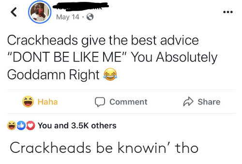 """crackheads: May 14  Crackheads give the best advice  """"DONT BE LIKE ME"""" You Absolutely  Goddamn Right  Haha  Share  Comment  b You and 3.5K others Crackheads be knowin' tho"""