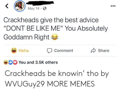 """crackheads: May 14  Crackheads give the best advice  """"DONT BE LIKE ME"""" You Absolutely  Goddamn Right  Haha  Share  Comment  b You and 3.5K others Crackheads be knowin' tho by WVUGuy29 MORE MEMES"""