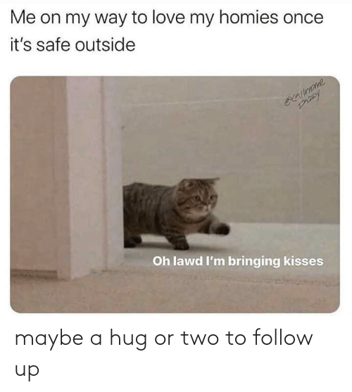 hug: maybe a hug or two to follow up