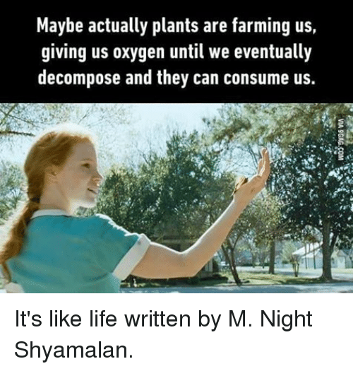 decomposer: Maybe actually plants are farming us  giving us oxygen until we eventually  decompose and they can consume us. It's like life written by M. Night Shyamalan.
