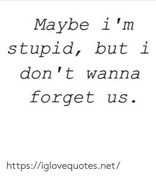 Net, Don, and Href: Maybe i'm  stupid, but i  don 't wanna  forget us https://iglovequotes.net/