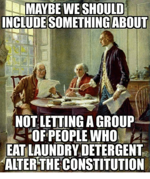 Laundry, Memes, and 🤖: MAYBE WE SHOULD  INCLUDE SOMETHING ABOUT  NOT LETTING A GROUP  OFPEOPLE WHO  EAT LAUNDRY DETERGENT  ALTER THECONSTITUTION