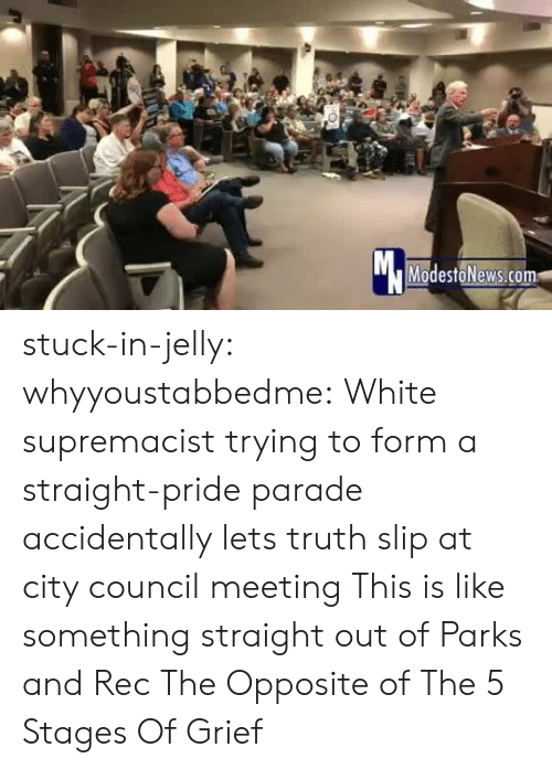 Target, Tumblr, and Blog: Mc  ModestoNews.com stuck-in-jelly:  whyyoustabbedme:   White supremacist trying to form a straight-pride parade accidentally lets truth slip at city council meeting   This is like something straight out of Parks and Rec       The Opposite of The 5 Stages Of Grief