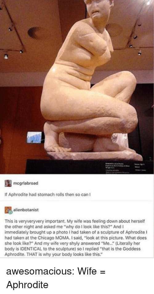 """Chicago, Taken, and Tumblr: mcgrlabroad  If Aphrodite had stomach rolls then so can I  alienbotanist  This is veryveryvery important. My wife was feeling down about herself  the other night and asked me """"why do I look like this?"""" And I  immediately brought up a photo I had taken of a sculpture of Aphrodite l  had taken at the Chicago MOMA. I said, """"look at this picture. What does  she look like?"""" And my wife very shyly answered """"Me..."""" (Literally her  body is IDENTICAL to the sculpture) so I replied """"that is the Goddess  Aphrodite. THAT is why your body looks like this."""" awesomacious:  Wife = Aphrodite"""