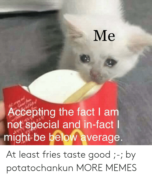 taste good: Me  Accepting the fact I am  not special and in-fact  might be below average At least fries taste good ;-; by potatochankun MORE MEMES
