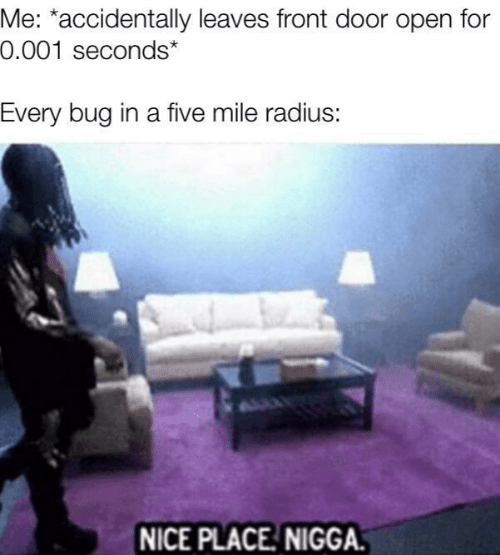 Nice, Radius, and Bug: Me: *accidentally leaves front door open for  0.001 seconds*  Every bug in a five mile radius:  NICE PLACE NIGGA.