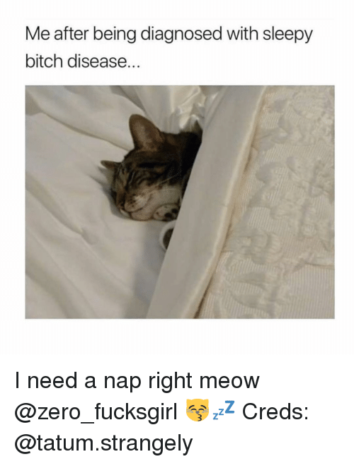 I Need A Nap: Me after being diagnosed with sleepy  bitch disease. I need a nap right meow @zero_fucksgirl 😽💤 Creds: @tatum.strangely