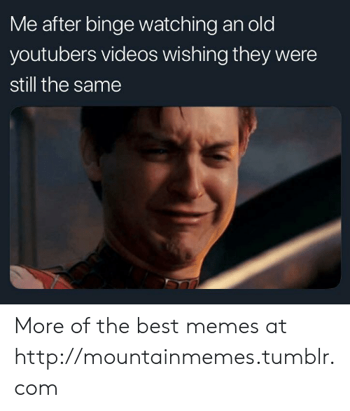 binge: Me after binge watching an old  youtubers videos wishing they were  still the same More of the best memes at http://mountainmemes.tumblr.com