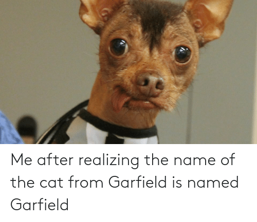 Garfield: Me after realizing the name of the cat from Garfield is named Garfield