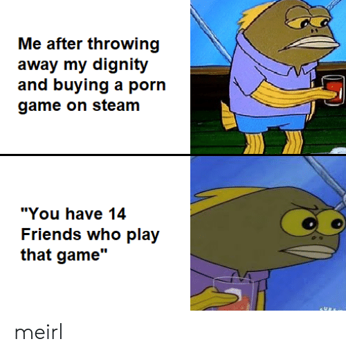 "dignity: Me after throwing  away my dignity  and buying a porn  game on steam  ""You have 14  Friends who play  that game"" meirl"