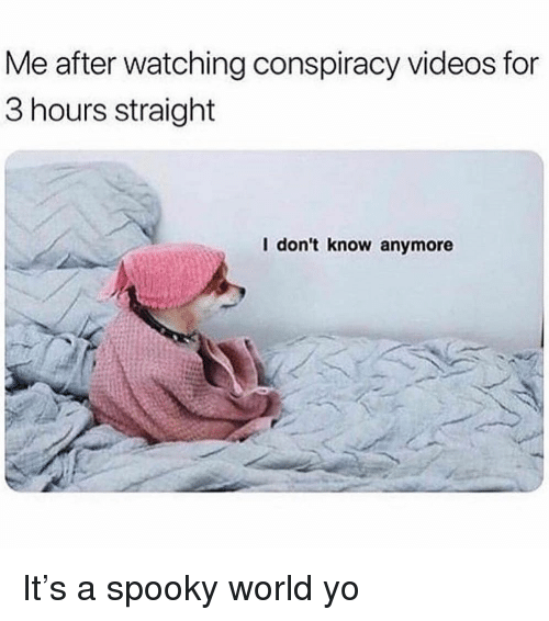 Videos, Yo, and World: Me after watching conspiracy videos for  3 hours straight  I don't know anymore It's a spooky world yo