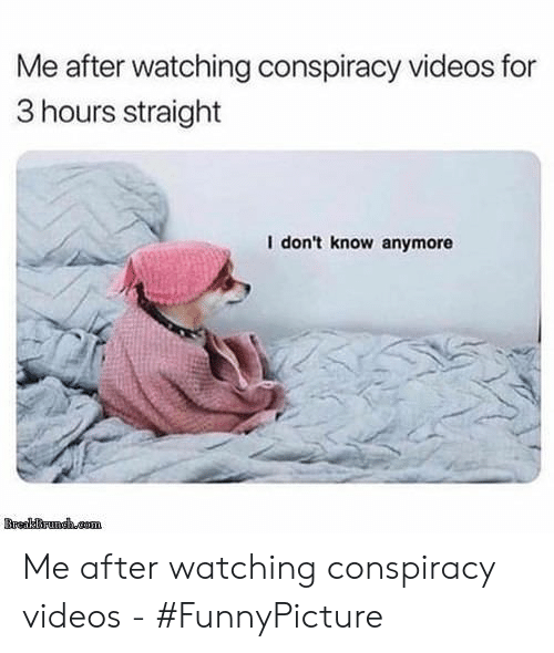 Videos, Conspiracy, and For: Me after watching conspiracy videos for  3 hours straight  I don't know anymore Me after watching conspiracy videos - #FunnyPicture