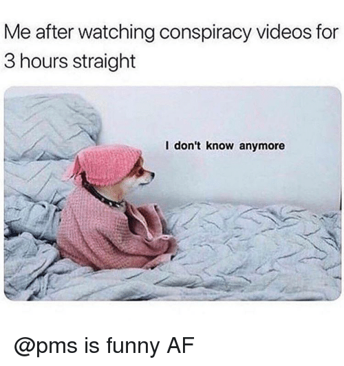 pms: Me after watching conspiracy videos for  3 hours straight  l don't know anymore @pms is funny AF