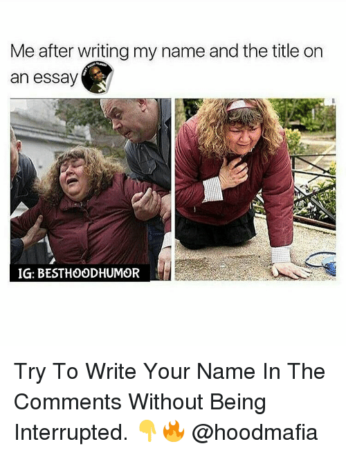 write an essay for me