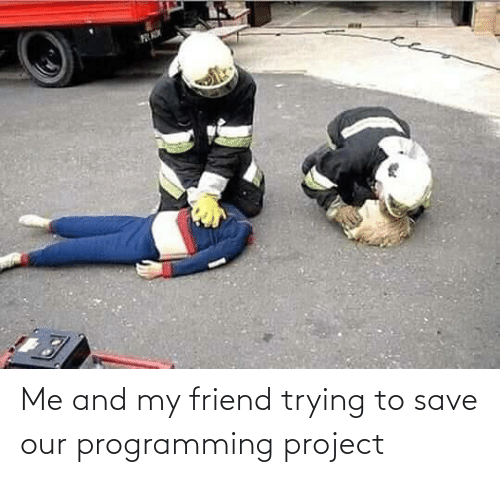 Programming: Me and my friend trying to save our programming project