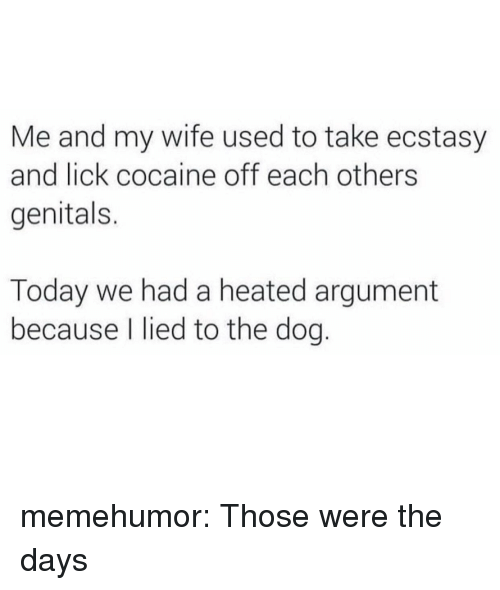 Tumblr, Blog, and Cocaine: Me and my wife used to take ecstasy  and lick cocaine off each others  genitals.  Today we had a heated argument  because I lied to the dog. memehumor:  Those were the days