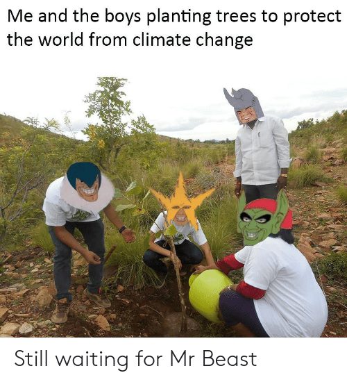 Trees, World, and Change: Me and the boys planting trees to protect  the world from climate change Still waiting for Mr Beast