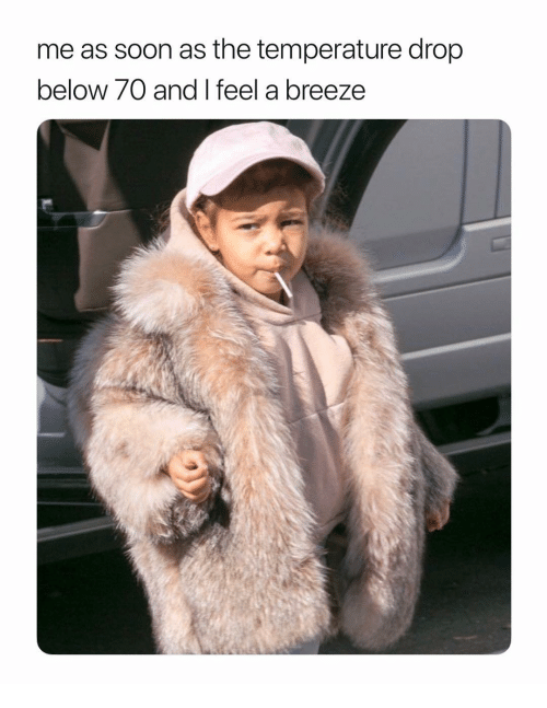 Soon..., Girl Memes, and Below: me as soon as the temperature drop  below 70 and I feel a breeze