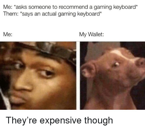 Keyboard, Gaming, and Asks: Me: 'asks someone to recommend a gaming keyboard  Them: *says an actual gaming keyboard*  Me:  My Wallet: They're expensive though