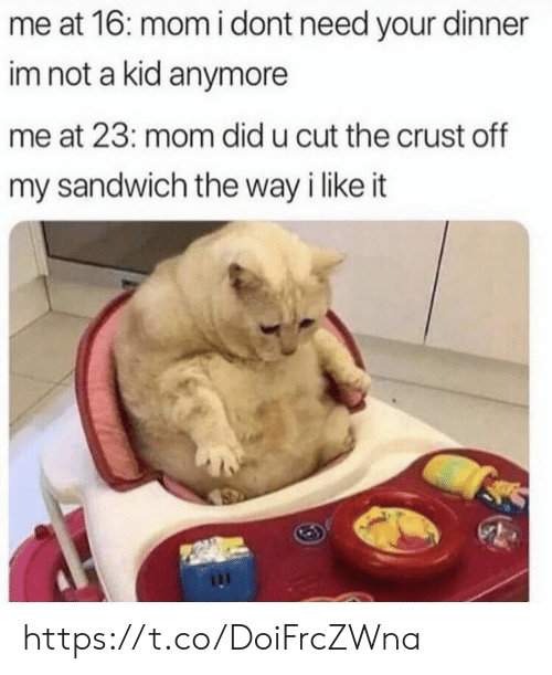 Memes, Mom, and 🤖: me at 16: momi dont need your dinner  im not a kid anymore  me at 23: mom did u cut the crust off  my sandwich the way i like it https://t.co/DoiFrcZWna