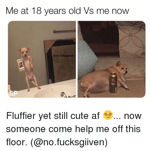 Cute AF: Me at 18 years old Vs me now  @no fucksgiiven  SP Fluffier yet still cute af 😏... now someone come help me off this floor. (@no.fucksgiiven)