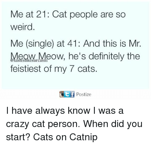 Cats, Crazy, and Definitely: Me at 21: Cat people are so  weird  Me (single) at 41: And this is Mr.  MeownMeow, he's definitely the  feistiest of my 7 cats. I have always know I was a crazy cat person. When did you start? Cats on Catnip