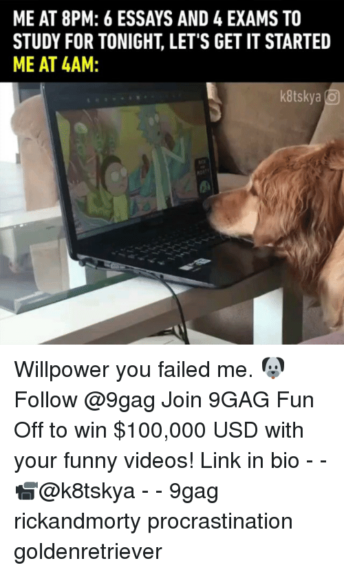 your funny: ME AT 8PM: 6 ESSAYS AND 4 EXAMS TO  STUDY FOR TONIGHT, LET'S GET IT STARTED  ME AT 4AM  kitskya Willpower you failed me. 🐶 Follow @9gag Join 9GAG Fun Off to win $100,000 USD with your funny videos! Link in bio - - 📹@k8tskya - - 9gag rickandmorty procrastination goldenretriever