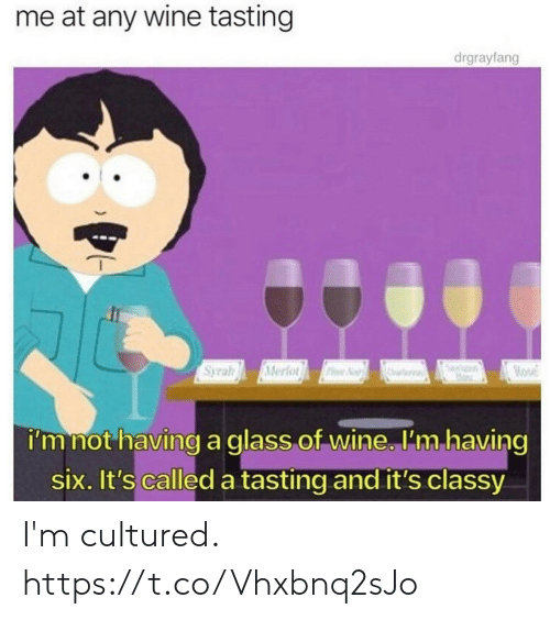 Tasting: me at any wine tasting  drgrayfang  Syrah  Merfor  ose  PNo  i'm not having a glass of wine. 'm having  six. It's called a tasting and it's classy I'm cultured. https://t.co/Vhxbnq2sJo