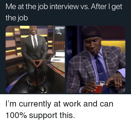 Anaconda, Job Interview, and Work: Me at the job interview vs. After I get  the job I'm currently at work and can 100% support this.