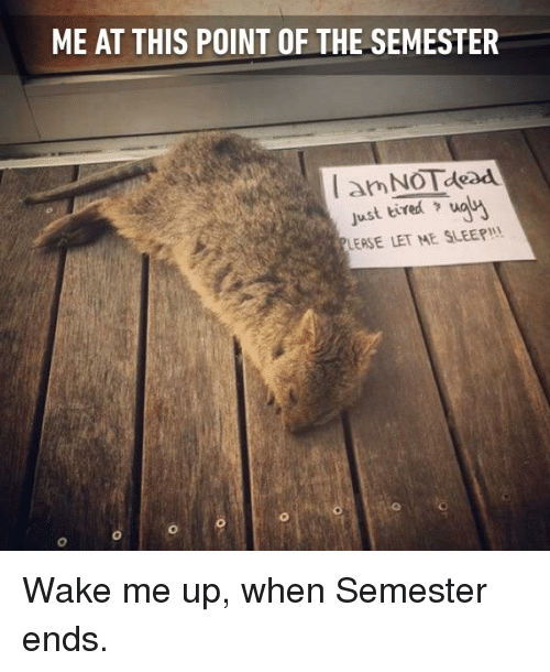Dank, Sleep, and 🤖: ME AT THIS POINT OF THE SEMESTER  just tired  LEASE LET ME SLEEP! Wake me up, when Semester ends.