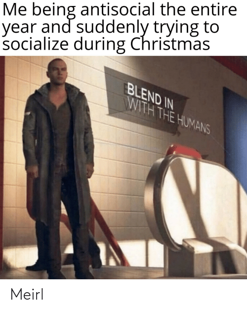 suddenly: Me being antisocial the entire  year and suddenly trying to  socialize during Christmas  BLEND IN  WITH THE HUMANS Meirl