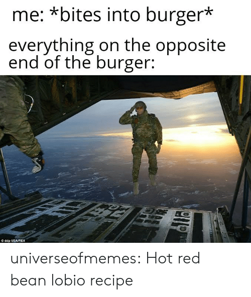 bean: me: *bites into burger*  everything on the opposite  end of the burger:  ddp USA/REX universeofmemes: Hot red bean lobiorecipe