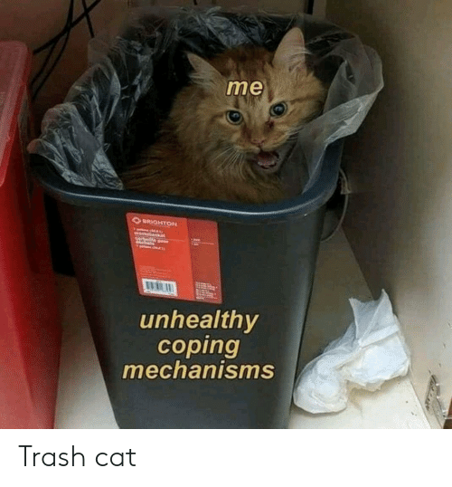 Trash, Cat, and Brighton: me  BRIGHTON  wastaask  orbein ou  unhealthy  coping  mechanisms Trash cat