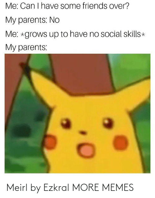 Have Some: Me: Can I have some friends over?  My parents: No  Me: *grows up to have no social skills*  My parents: Meirl by Ezkral MORE MEMES