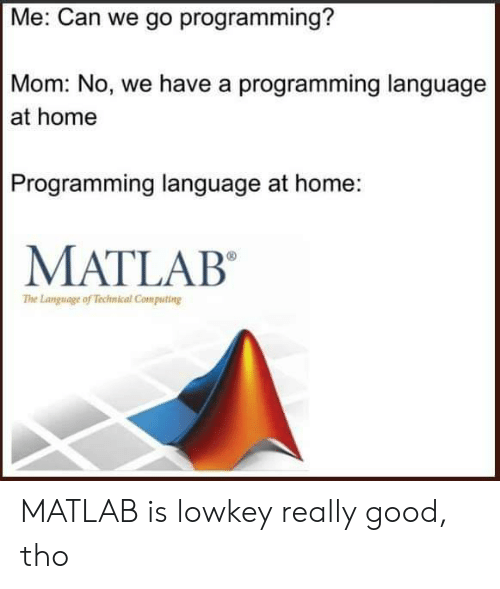 computing: Me: Can we go programming?  Mom: No, we have a programming language  at home  Programming language at home:  MATLAB  The Language of Technical Computing MATLAB is lowkey really good, tho