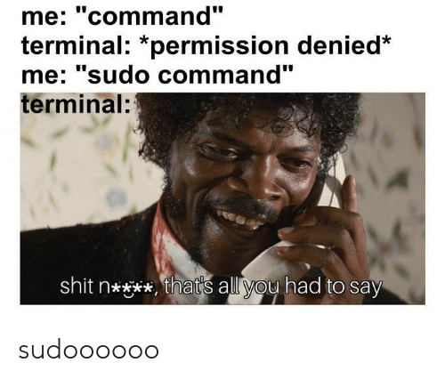 "Thats All You Had To Say: me: ""command""  terminal: *permission denied  me' sudo command  terminal:  shit n****, that's all you had to say sudoooooo"