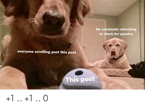 Check, Post, and For: Me constantly refreshing  to check for upvotes  everyone scrolling past this post  This post +1 .. +1 .. 0
