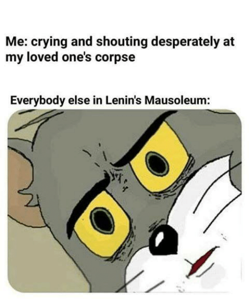 Crying, Sassy Socialast, and Desperately: Me: crying and shouting desperately at  my loved one's corpse  Everybody else in Lenin's Mausoleum: