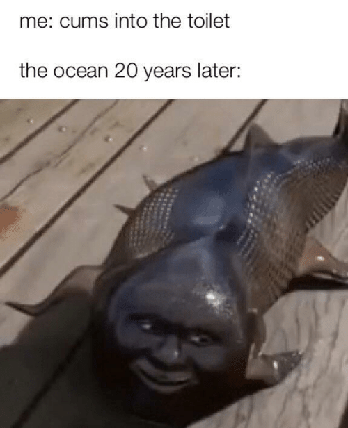 Ocean, Toilet, and  Later: me: cums into the toilet  the ocean 20 years later: