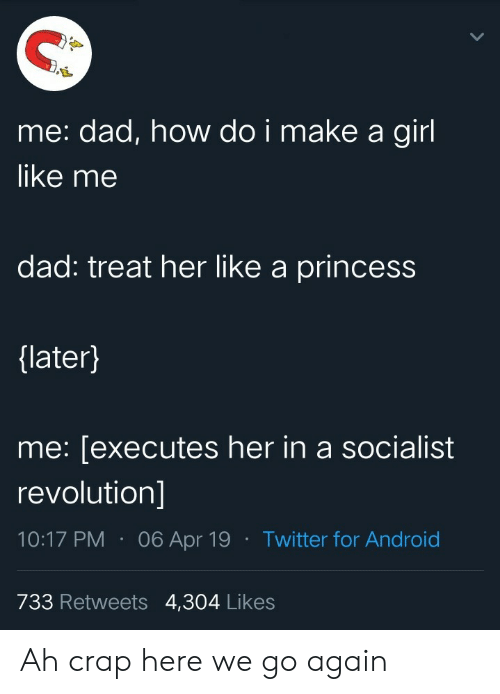 Dad, Girl, and Princess: me: dad, how do i make a girl  like me  dad: treat her like a princess  {later}  me: [executes her in a socialist  revolution]  06 Apr 19Twitter for And roid  733 Retweets 4,304 Likes Ah crap here we go again
