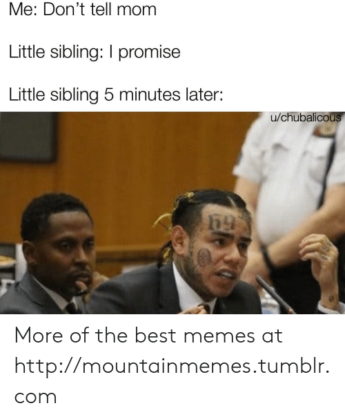 Memes, Tumblr, and Best: Me: Don't tell mom  Little sibling: I promise  Little sibling 5 minutes later:  u/chubalicous More of the best memes at http://mountainmemes.tumblr.com