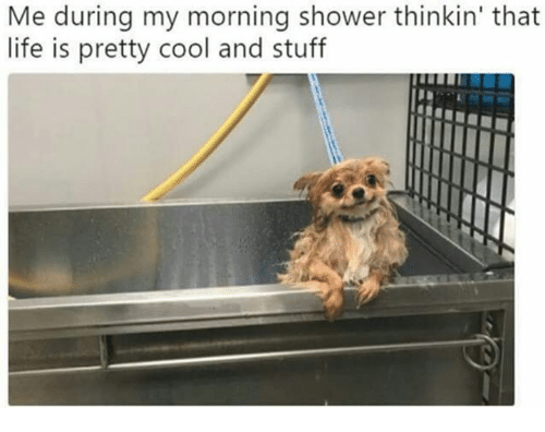 Dank, Life, and Shower: Me during my morning shower thinkin' that  life is pretty cool and stuff